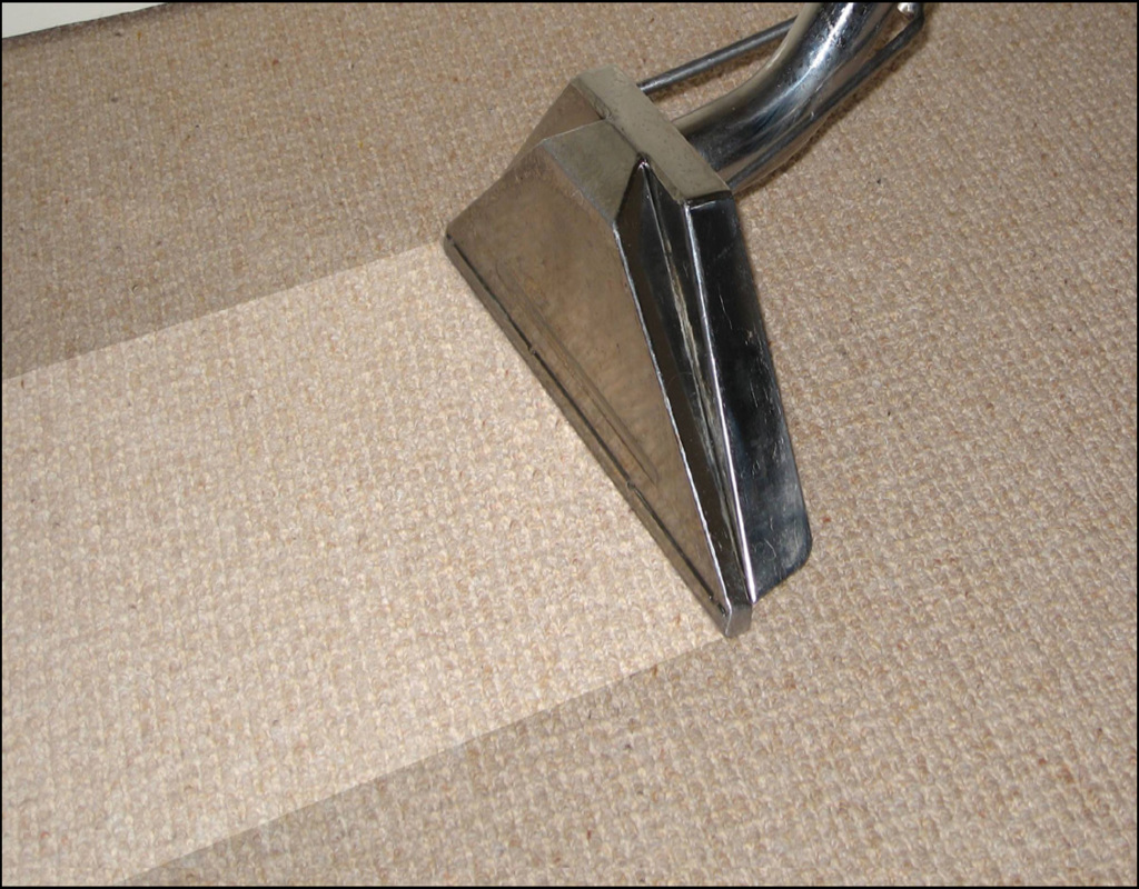 Carpet Cleaning Daphne Al Cruzcarpetscom