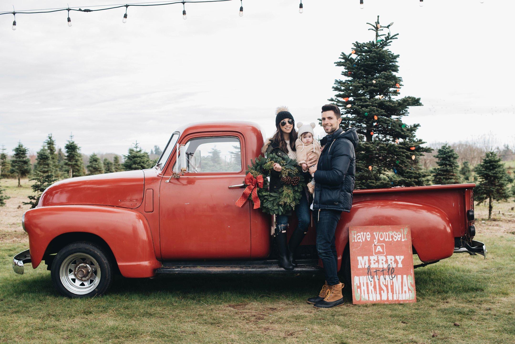 Sauvie Island Christmas Tree Farm Crystalin Marie