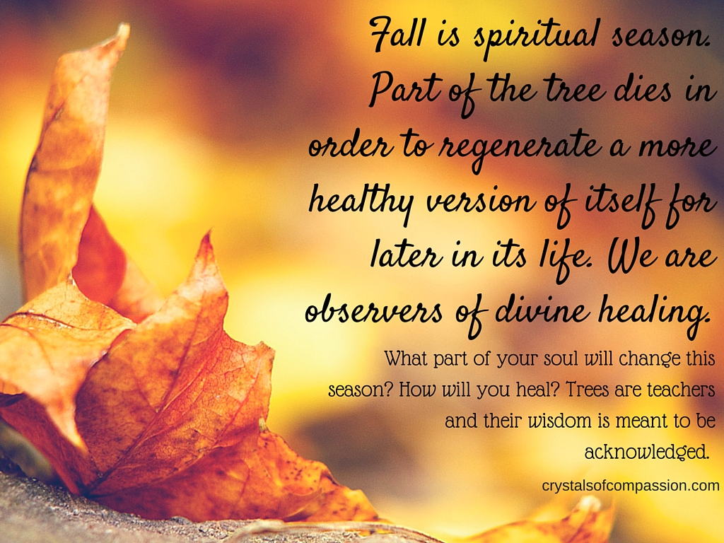 Autumn Fall Live Wallpaper Autum Is A Season Of Spiritual Change Crystals Of Compassion