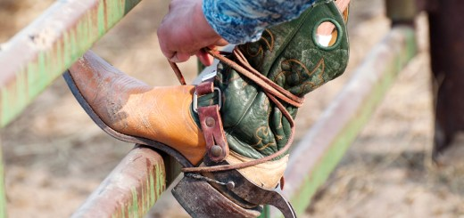 A cowboy tightens a strap on his boot during a Sept. 23, 2012 CSC-hosted Rodeo competition at the Dawes County Fairgrounds. — Photo by Ashley Swanson