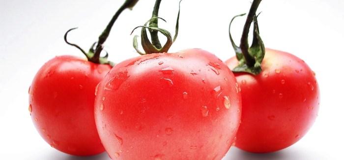 Pomidory mięsiste – rozpoznanie dobrego pomidora na targu.