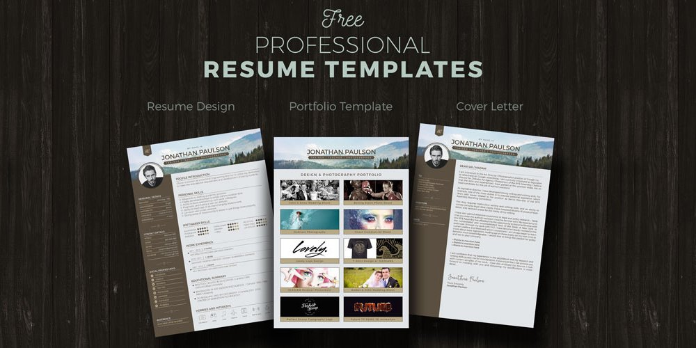 Ultimate Collection of Free Resume Templates » CSS Author - free professional resume template