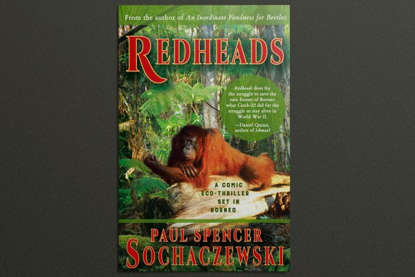 Eco-thriller 'Redheads' by CSVPA member