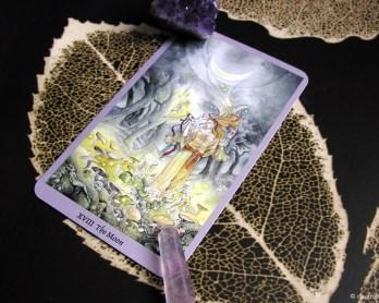 meditacion tarot