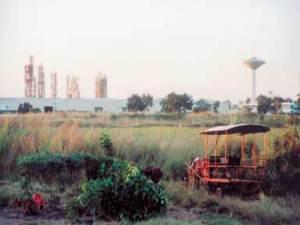 La industria citrícola de Jagüey Grande más allá de los herbazales