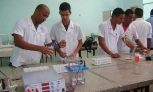 La formación de profesionales en Cuba: una perspectiva desde el mundo del trabajo