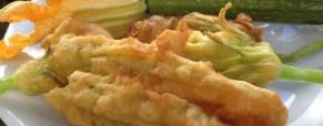Fiori di zucchina colti e fritti