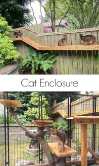 Awesome Large DIY backyard Cat Enclosure | Cuckoo4Design