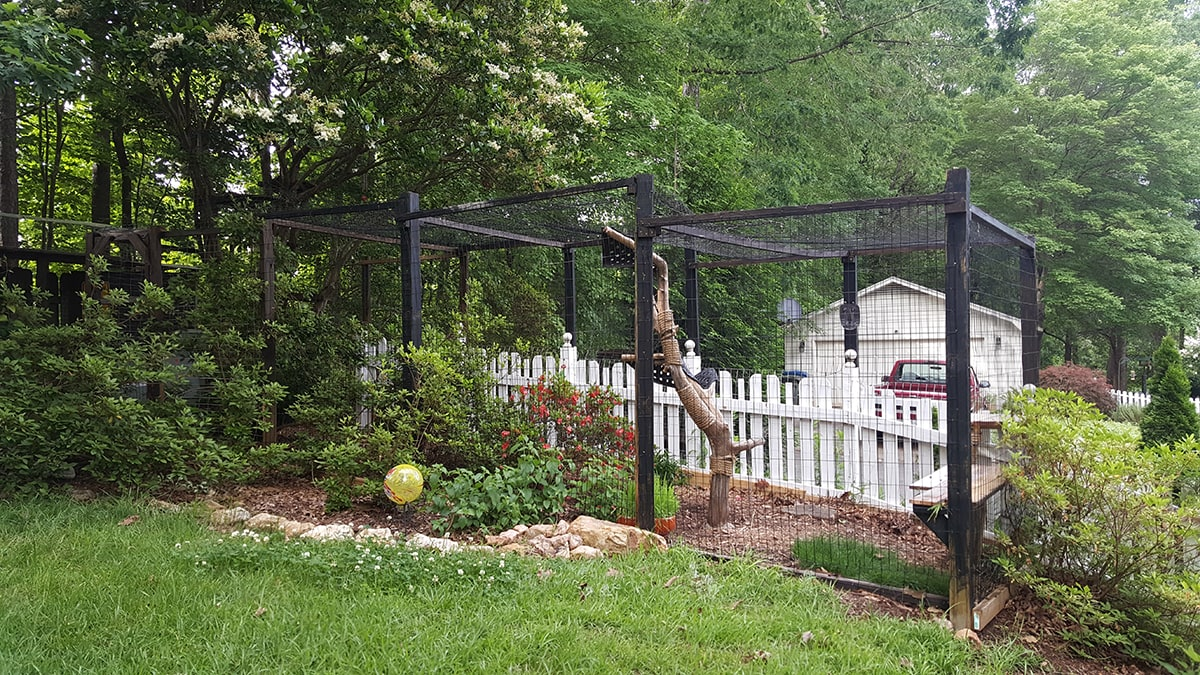 Outdoor Katzengehege Cat Cage Outside