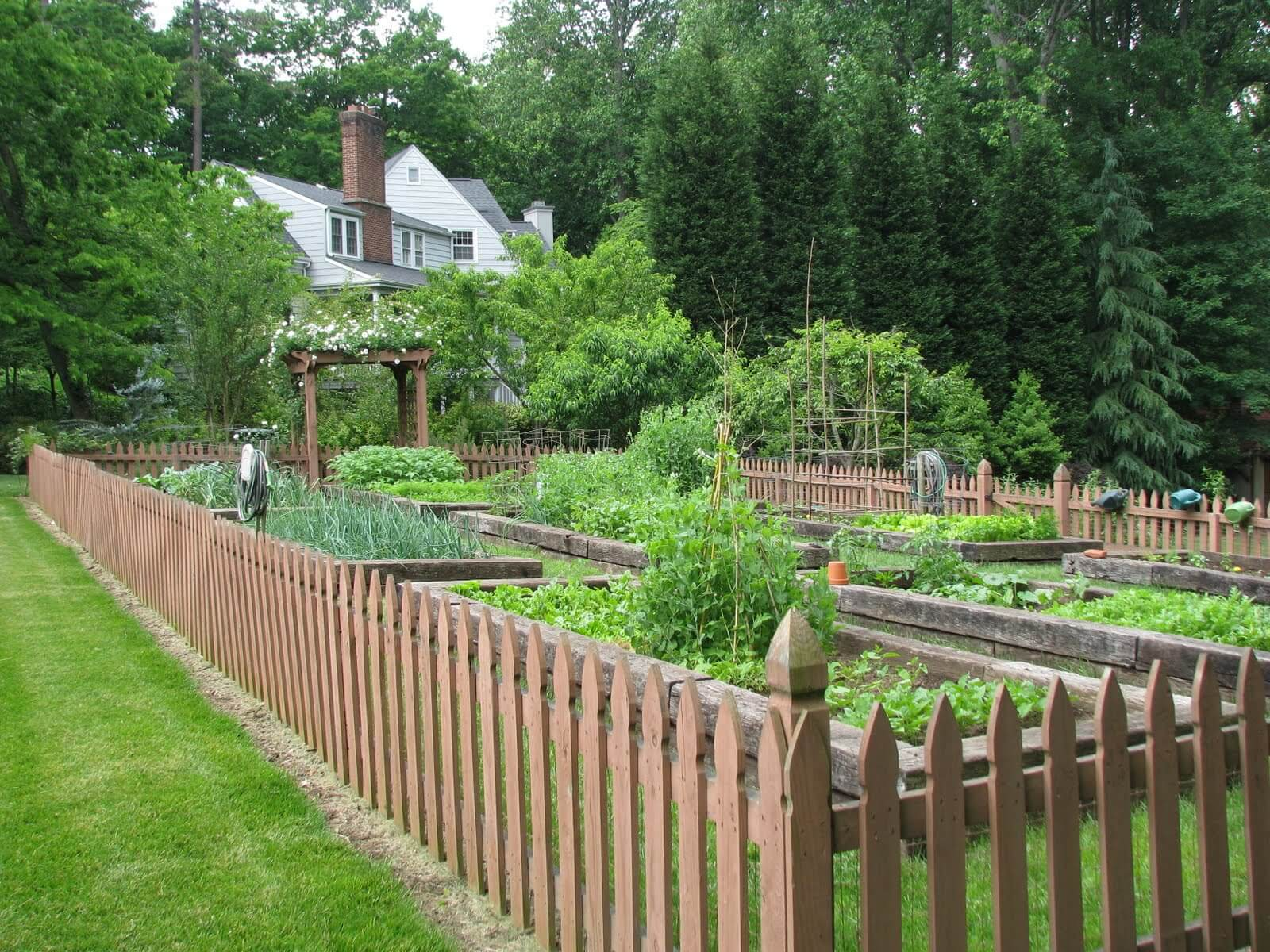 Goedkope Tuinafscheiding Cheap Fence Ideas To Embellish Your Garden And Your Home