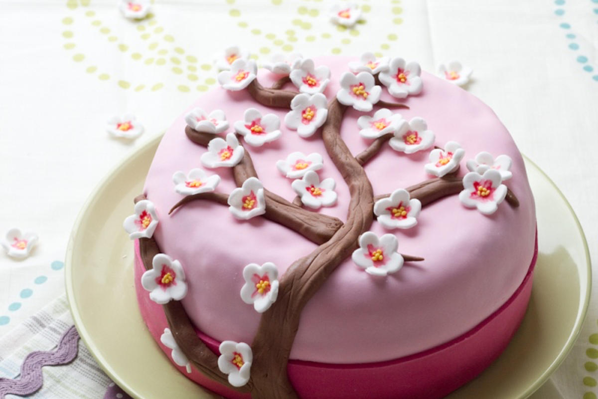 Pate Sucre Pour Decoration Gateau Cherry Blossom Cake