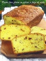 Paine-fara-gluten-cu-sofran-si-fulgi-de-ardei53