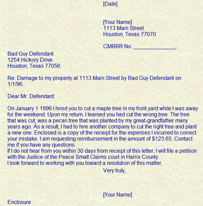 Automobile Insurance Made Easy Texas Department Of Insurance Car Accident Appeal Letter For Car Accident