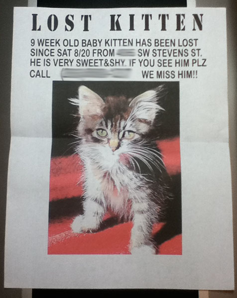 how to make a missing cat poster