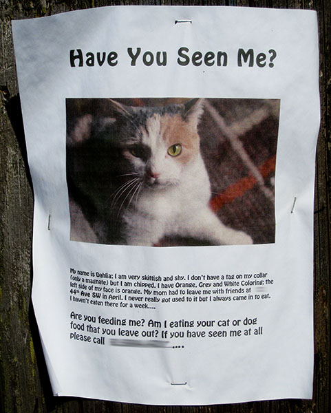 Dahlia is Missing The Blog of Otis - make a missing person poster
