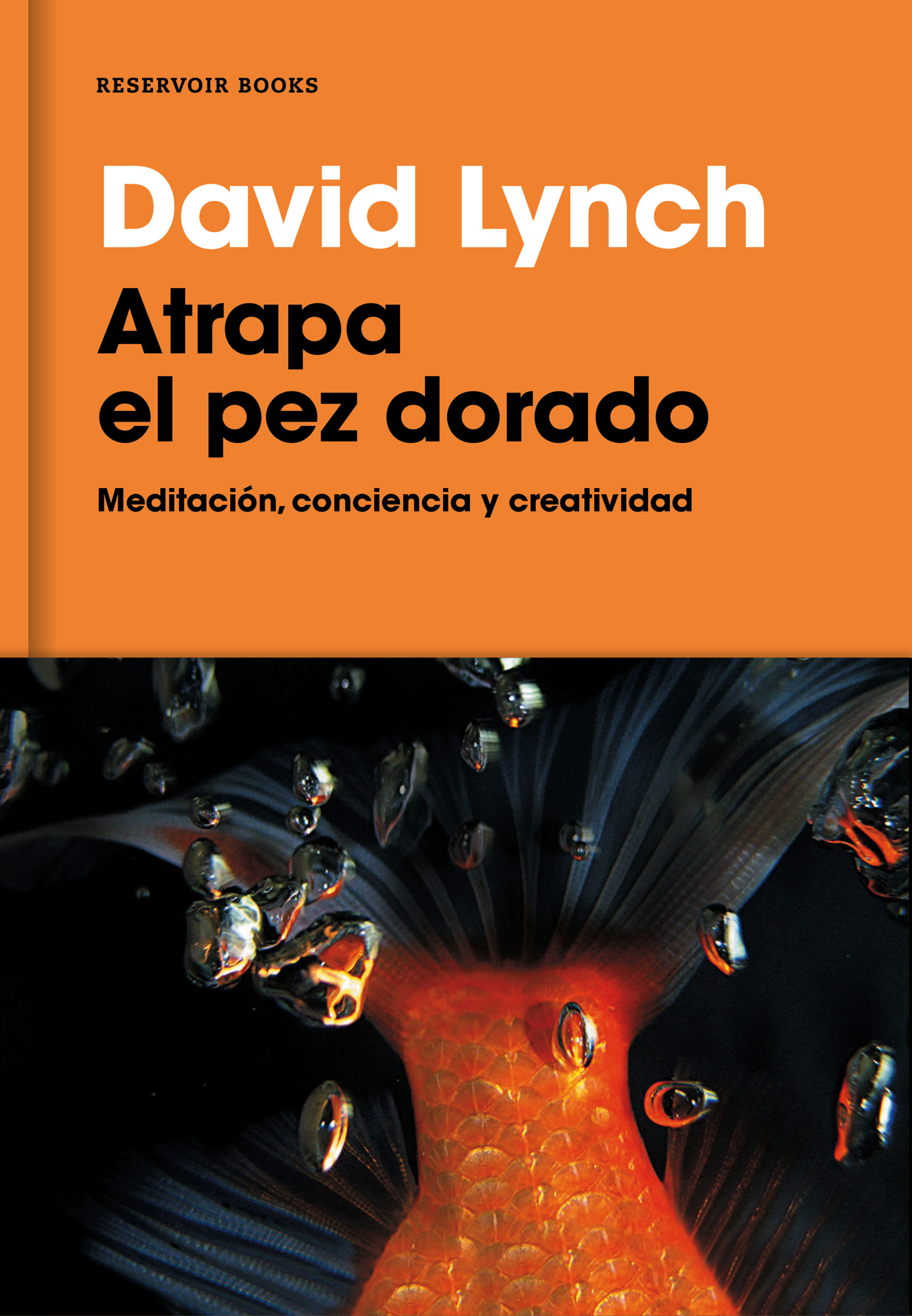 Big Fish Libro David Lynch Atrapando El Pez Gordo Culturaca
