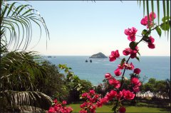 A view from just outside Café Milagro