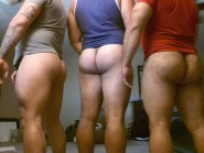 arse-collection