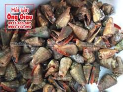 Ốc nhảy bao nhiêu 1 kg – mua ở đâu tại Sài Gòn – làm món gì ngon