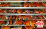 Cá hồi xông khói là gì – giá bao nhiêu tiền 1 kg – bán ở đâu tại TpHCM