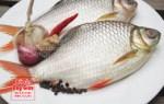 Giá mua bán cá diếc hiện nay, giao hàng tận nơi