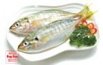 Giá cá bạc má và các món ngon với cá bạc má