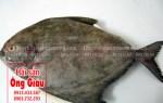 Giá bán cá chim đen tươi rẻ nhất TPHCM