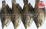 Khô cá sặc rằn-bổi Cà Mau một nắng bao nhiêu 1 kg – làm món gì ngon