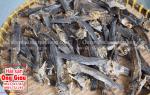 Khô cá thòi lòi mua ở đâu bán tại tphcm – giá bao nhiêu tiền