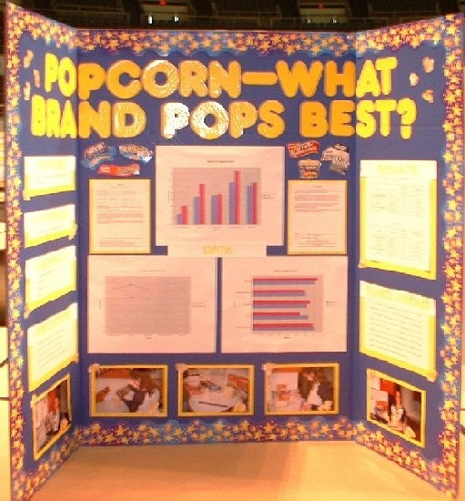 Science Fair Project Poster Board Ideas How To Make Display Board - project poster board