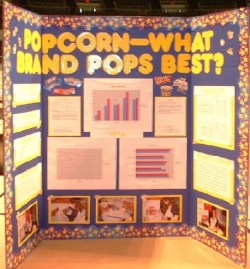 Science Fair Display Boards