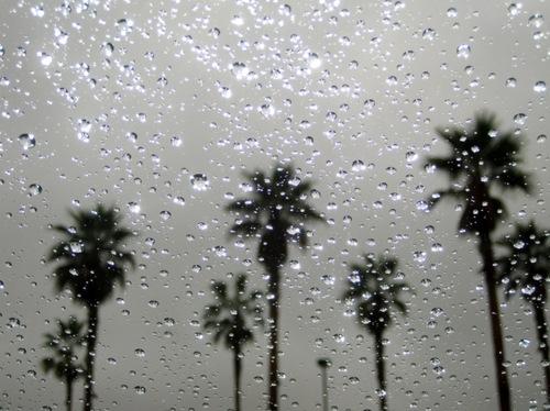 Wallpaper Los Angeles Iphone Prompt 15 Poems For Rain Cupertino Poet Laureate