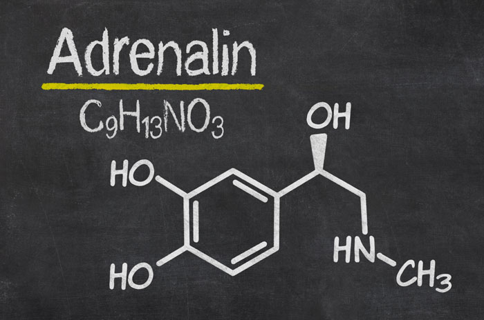 Hormones and Anxiety - Adrenaline