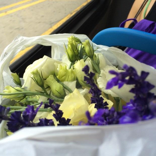 Summer flowers on the bus | frannycakes