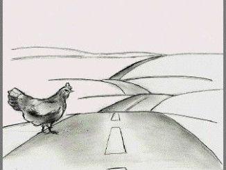 20080303211335-por-que-ha-cruzado-la-carretera-el-pollo-iraqui
