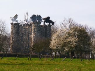 Castillos Curiosos