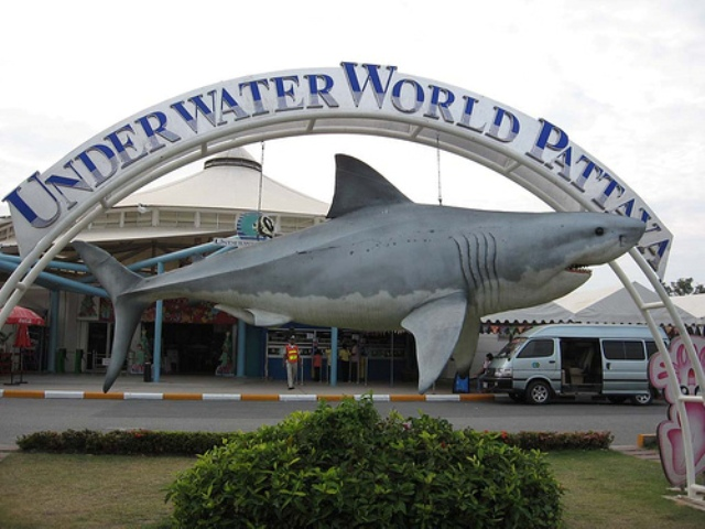 Underwater World in Pattaya