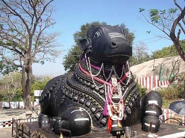 bull temple, bangalore, india
