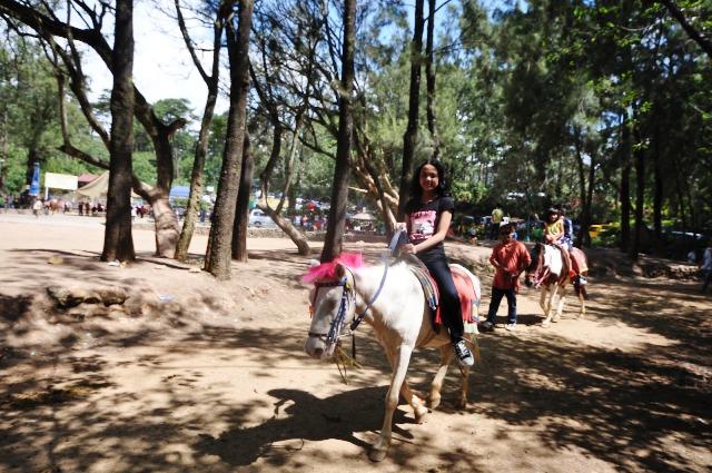 horseback riding activity