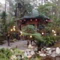 botanical gardens, baguio, philippines