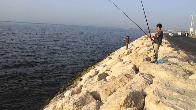fishing, al khobar, corniche