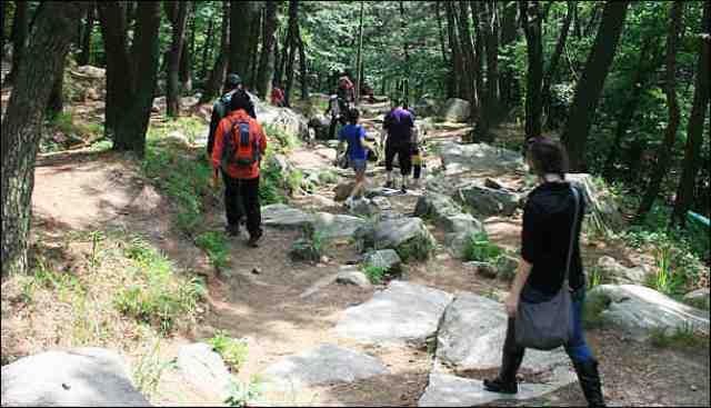 busan-activites-hiking-1