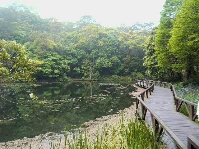 botanical gardens, taiwan, yilan
