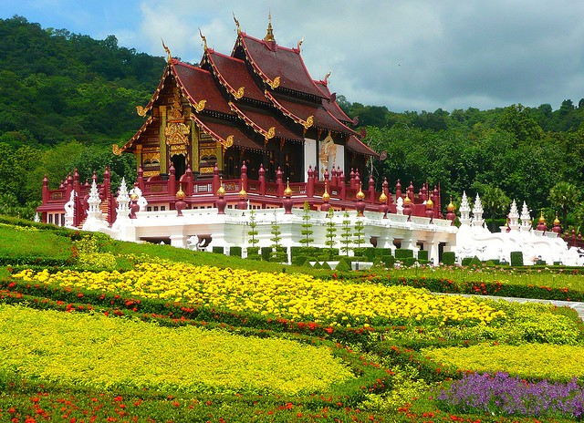 royal fora grounds, plants, flowers, chiang mai, thailand