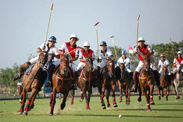 polo, sport in jaipur, india