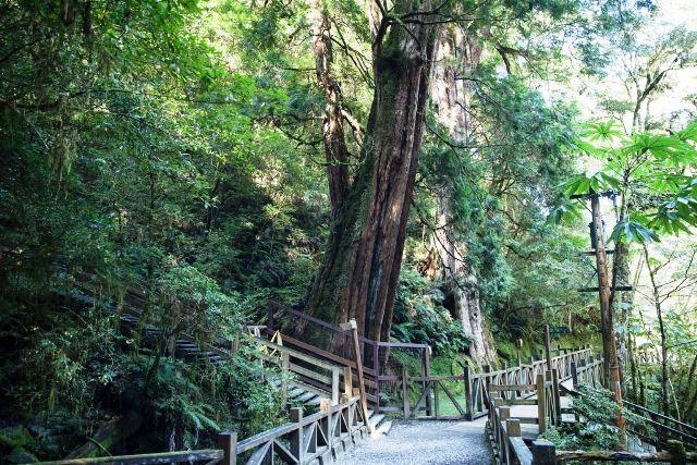 nature park, taiwan, taoyuan nature park