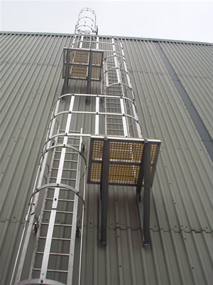 Roof Ladders Fixed Caged Ladders Fixed Vertical Ladder