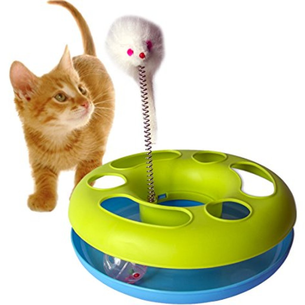 Cats And Dogs Playing With Toys