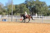 hunter riding lesson in panama city