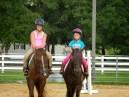 Panama City Horse Camp